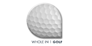 Whole in 1 Golf logo